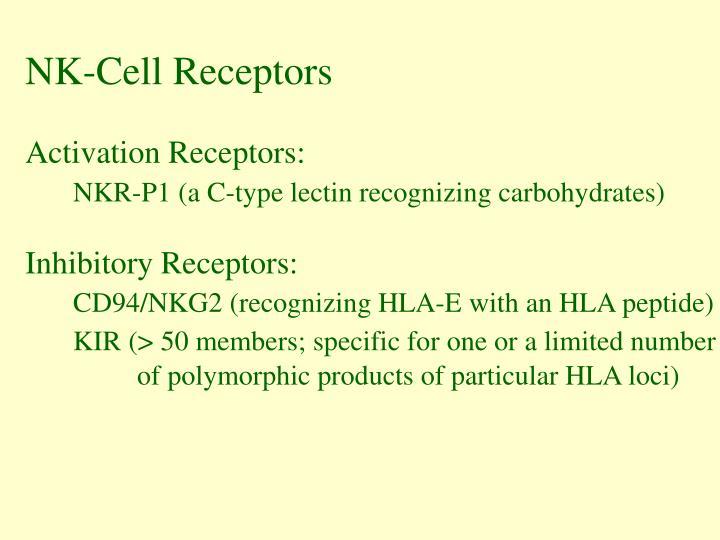 NK-Cell Receptors