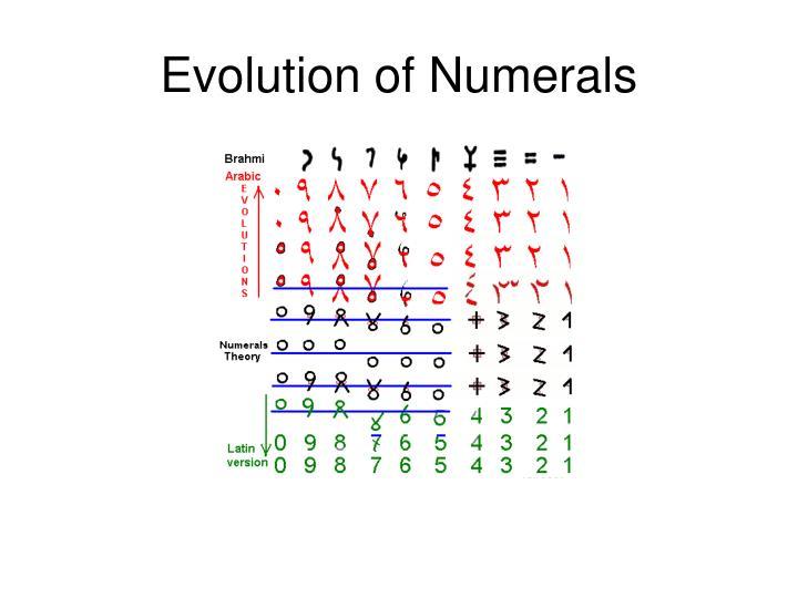 Evolution of Numerals