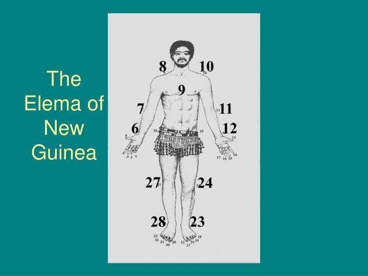 The Elema of New Guinea