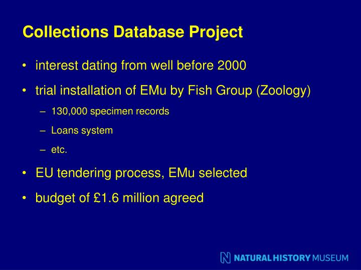 Collections Database Project