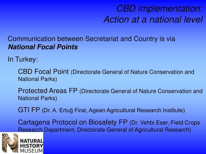 CBD implementation:
