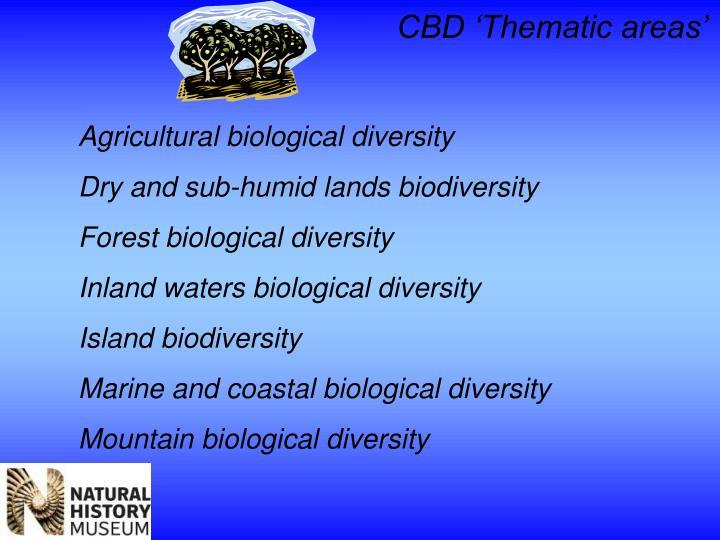 CBD 'Thematic areas'