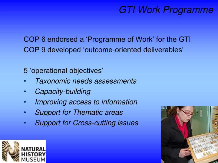COP 6 endorsed a 'Programme of Work' for the GTI