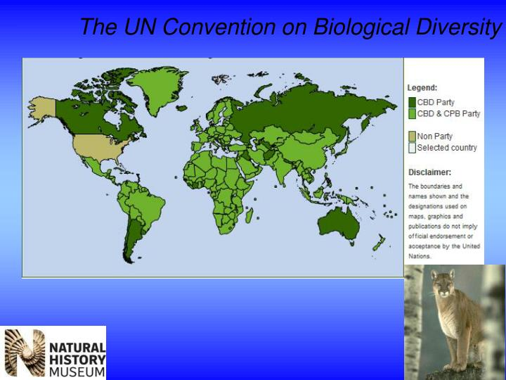 The UN Convention on Biological Diversity