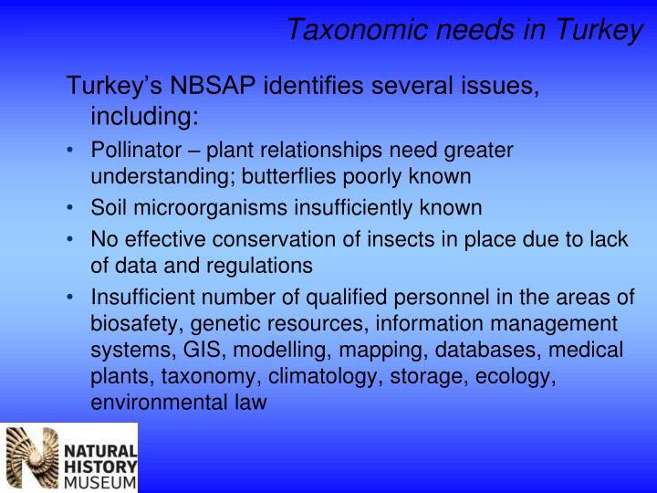 Taxonomic needs in Turkey