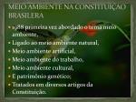 meio ambiente na constitui ao brasilera