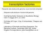 transcription factories