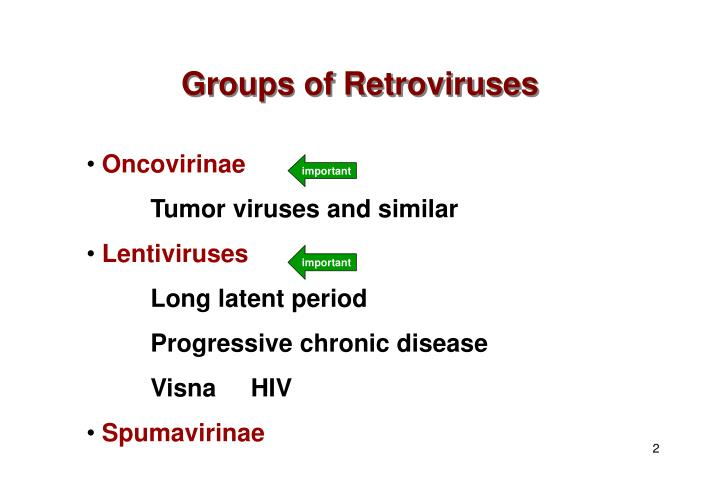 Groups of retroviruses
