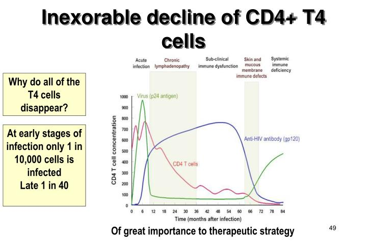 Inexorable decline of CD4+ T4 cells