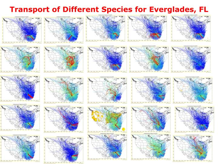 transport of different species for everglades fl