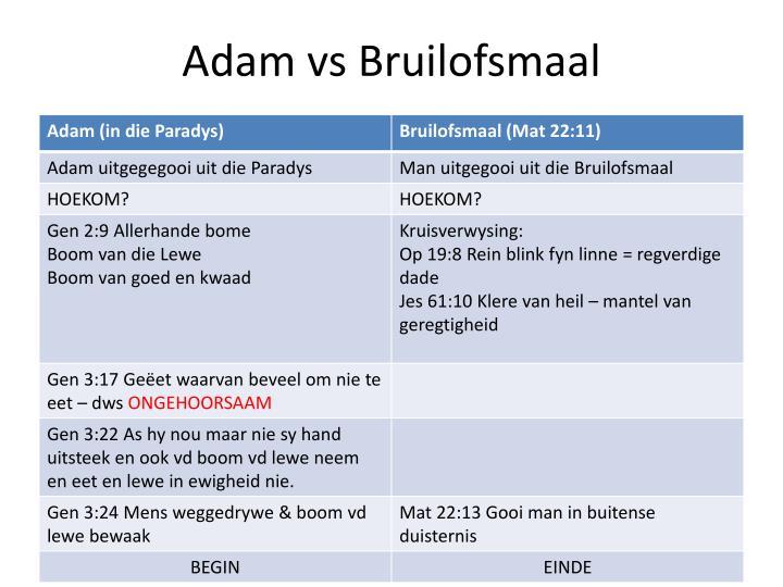 Adam vs Bruilofsmaal