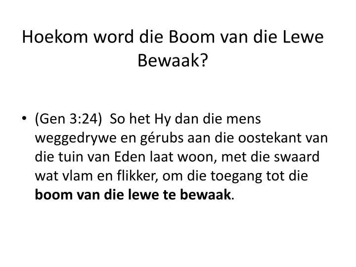 Hoekom