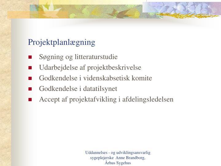 Projektplanlægning