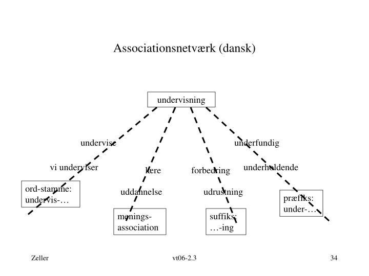 Associationsnetværk (dansk)