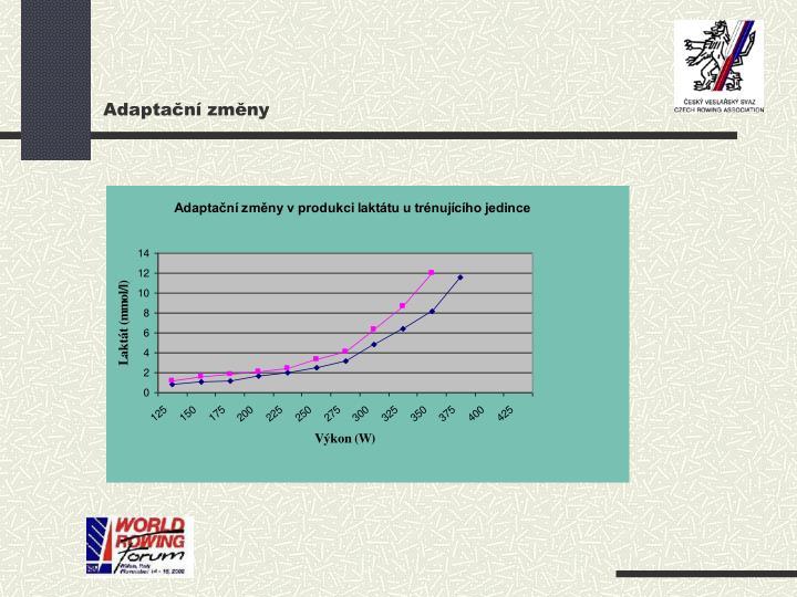 Adaptační změny