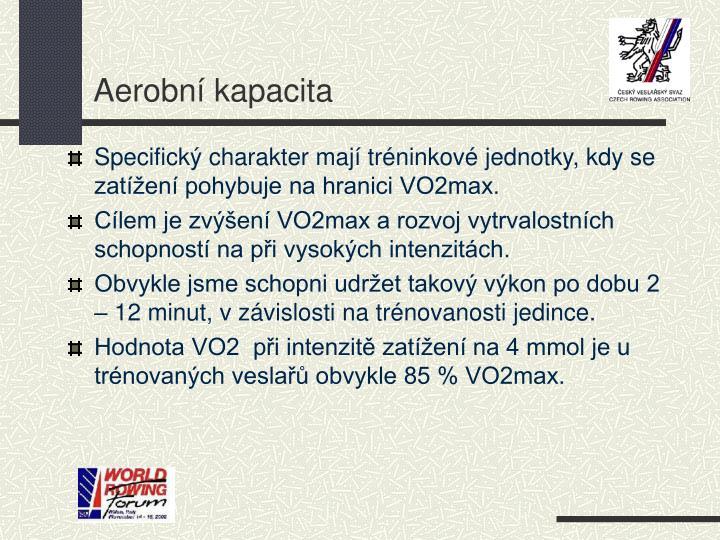 Aerobní kapacita
