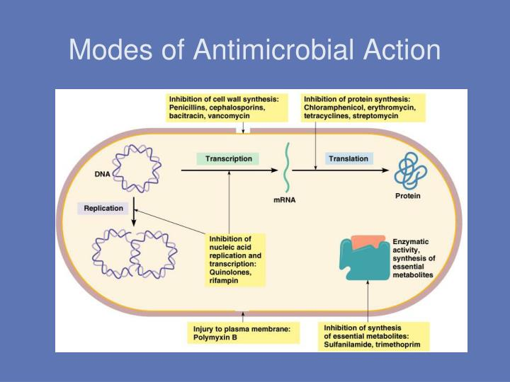 Modes of Antimicrobial Action
