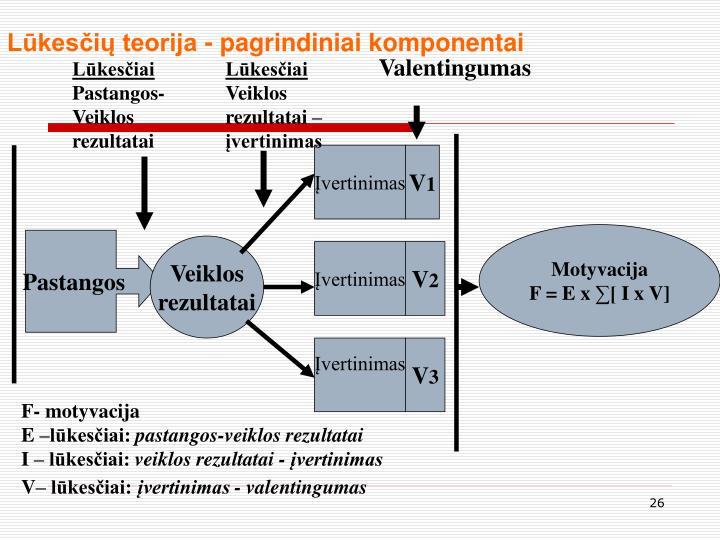 Lūkesčių teorija - pagrindiniai komponentai