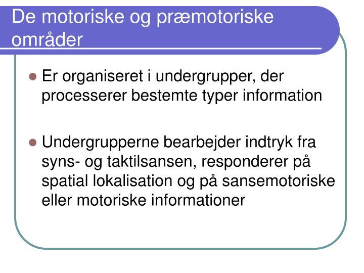 De motoriske og præmotoriske områder