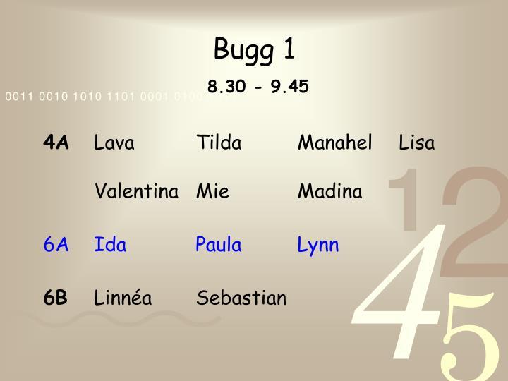 Bugg 1
