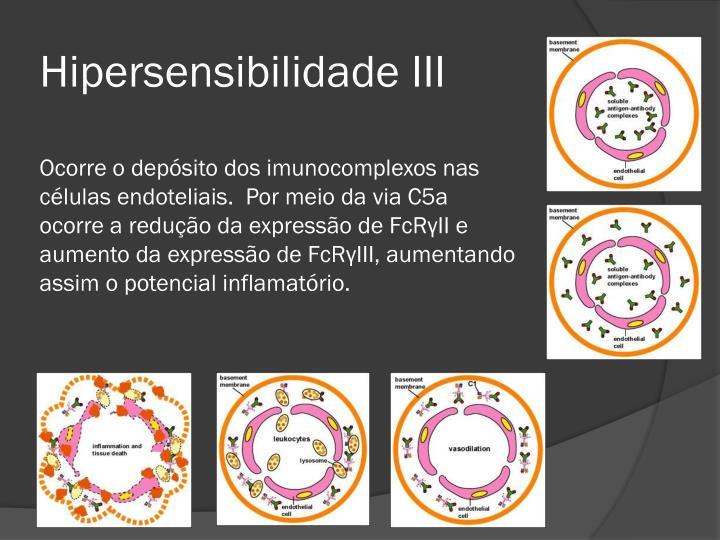 Hipersensibilidade III
