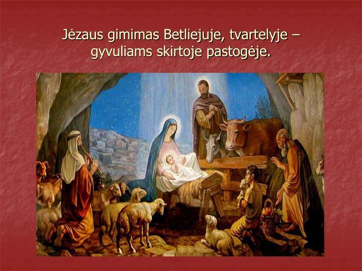 Jėzaus gimimas Betliejuje, tvartelyje –