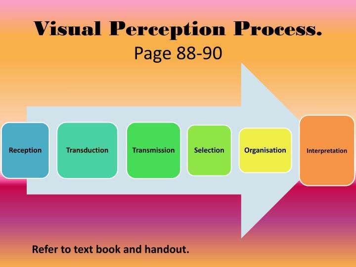 Visual Perception Process.