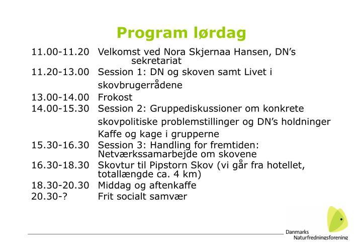 Program lørdag