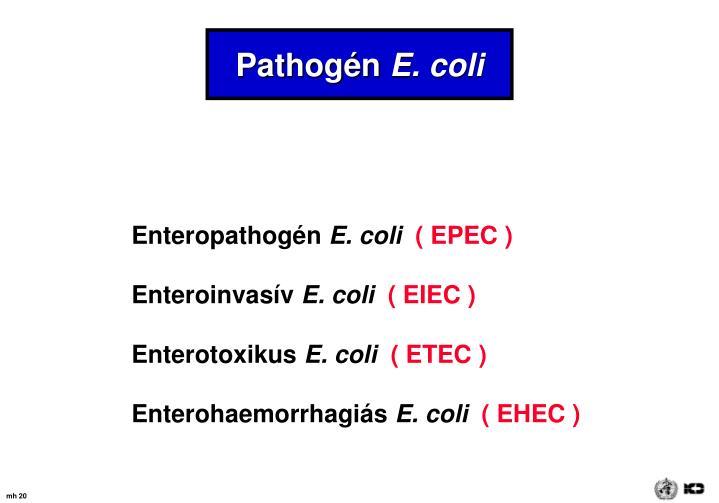 Pathogén