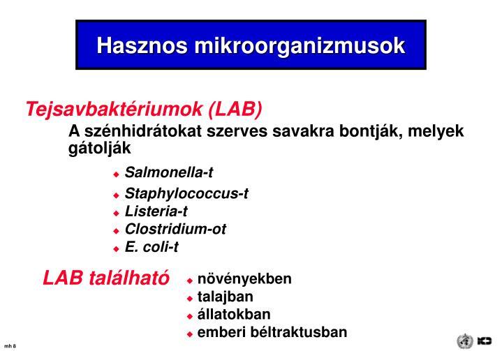 Hasznos mikroorganizmusok