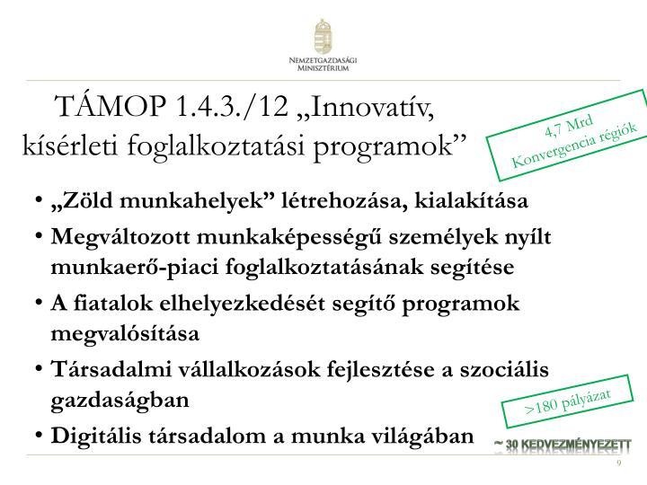 """TÁMOP 1.4.3./12 """"Innovatív, kísérleti foglalkoztatási programok"""""""