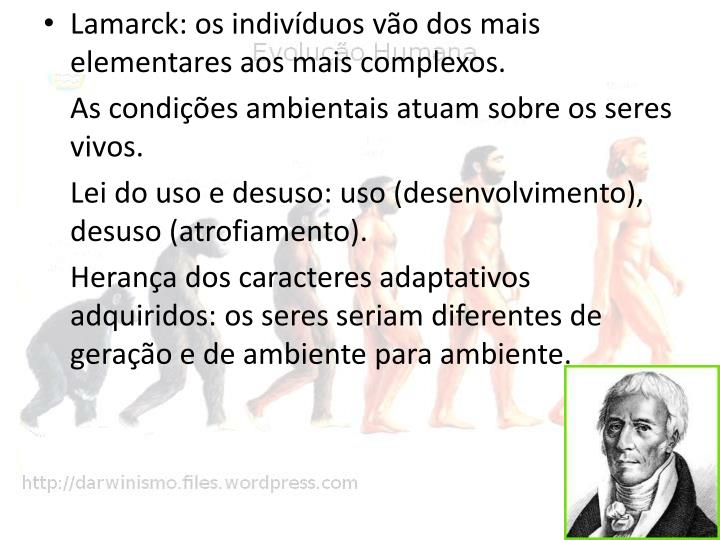 Lamarck: os indivíduos vão dos mais elementares aos mais complexos.
