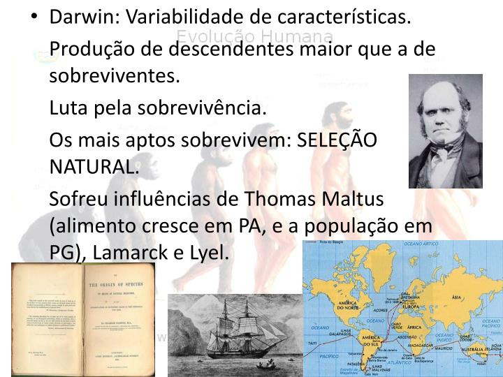 Darwin: Variabilidade de características.