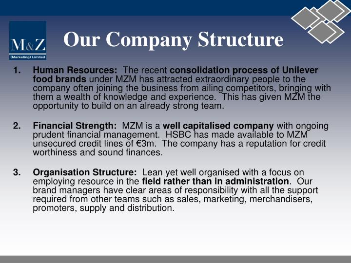 Our Company Structure
