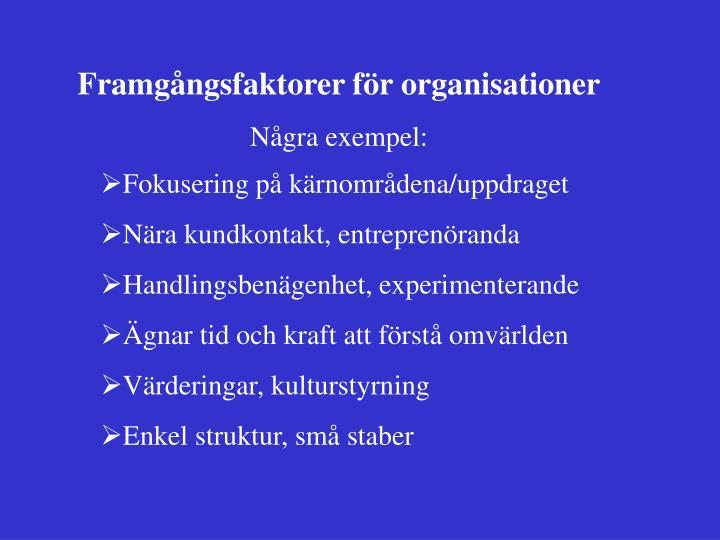 Framgångsfaktorer för organisationer