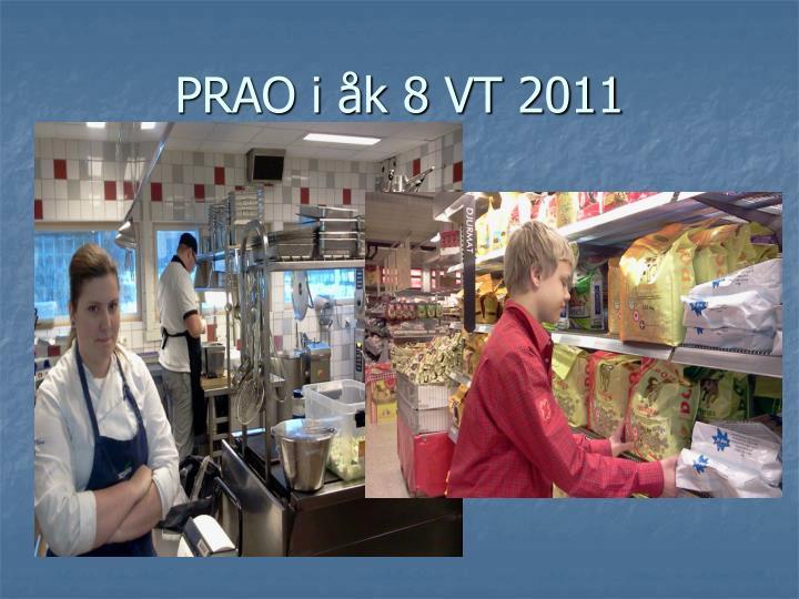 PRAO i åk 8 VT 2011