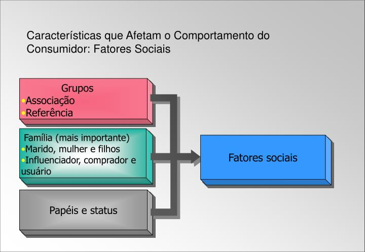 Características que Afetam o Comportamento do Consumidor: Fatores Sociais