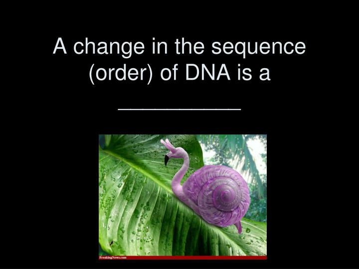 A change in the sequence (order) of DNA is a __________