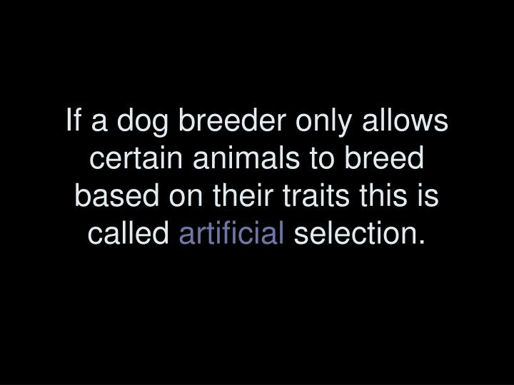 If a dog breeder only allows certain animals to breed based on their traits this is called