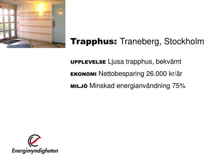 Trapphus:
