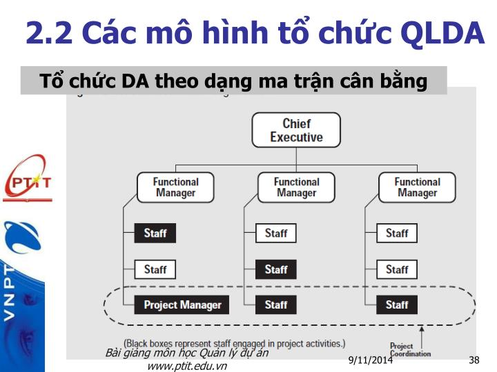 2.2 Các mô hình tổ chức QLDA