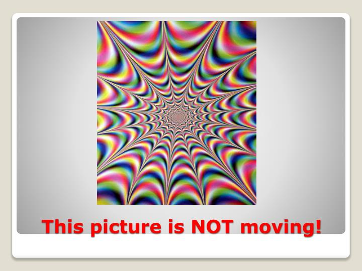 This picture is NOT moving!