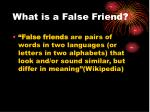what is a false friend