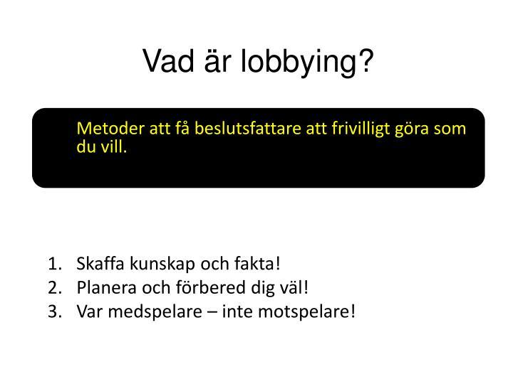 Vad är lobbying?