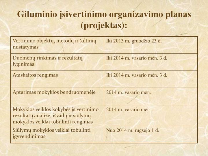 Giluminio įsivertinimo organizavimo planas (projektas):