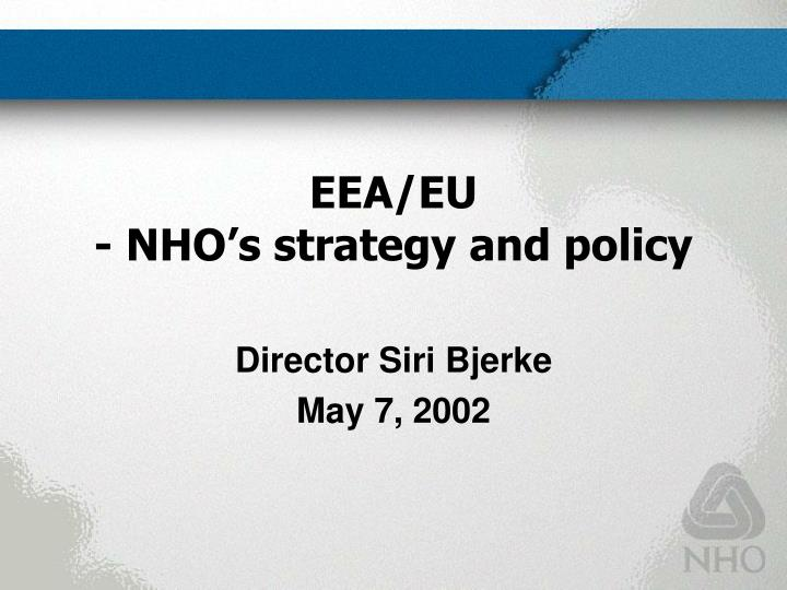 Eea eu nho s strategy and policy
