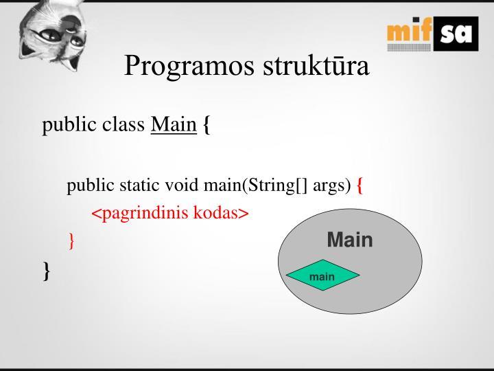 Programos struktūra