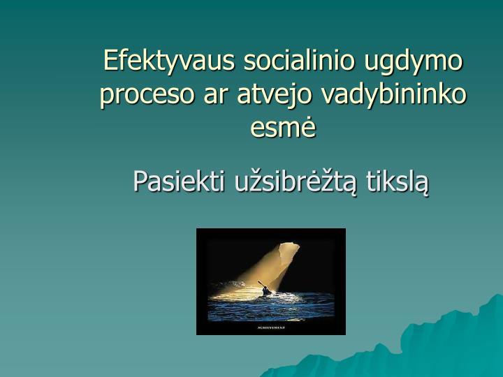 Efektyvaus socialinio ugdymo proceso ar atvejo vadybininko esmė