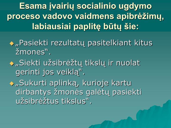 Esama įvairių socialinio ugdymo proceso vadovo vaidmens apibrėžimų, labiausiai paplitę būtų šie: