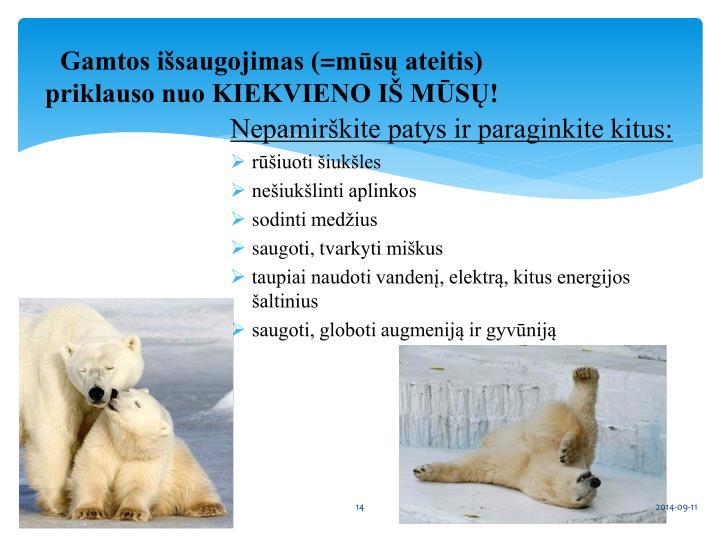 Gamtos išsaugojimas (